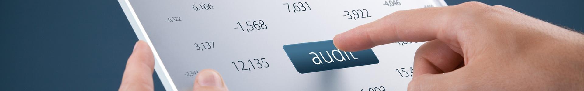 Markant Audit Mobile Header